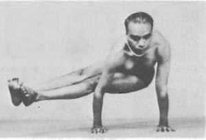 Dwi-Pada-Koundinyasana-Yoga-Pose-BKS-Iyengar